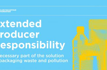 Extended Producer Responsibility  (EPR) for packaging
